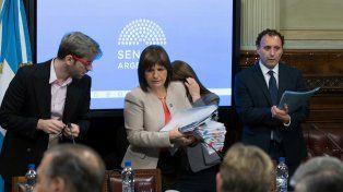 Ante el Senado, Bullrich negó la participación de Gendarmería en la desaparición de Maldonado