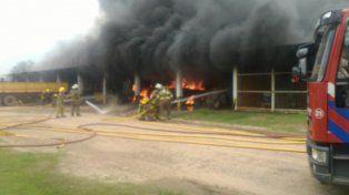 Un gran incendio afectó una dependencia de Vialidad Provincial