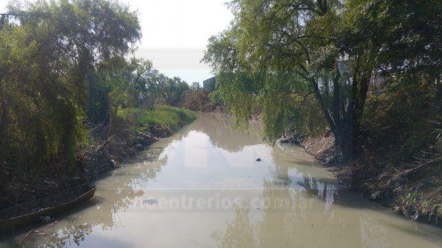 Contaminado. En el arroyo Las Viejas se levanta mal olor y el agua es de color verde.
