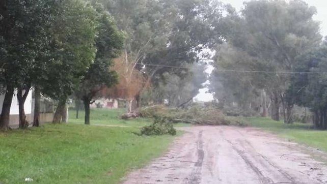 Villa Domínguez. El viento afectó a la localidad del departamento Villaguay.