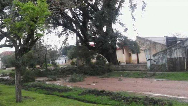 Fuerte viento. El temporal se hizo sentir en Villa Domínguez.