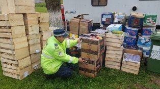 Federación: Decomisaron más de 1.300 kilos de frutas y verduras