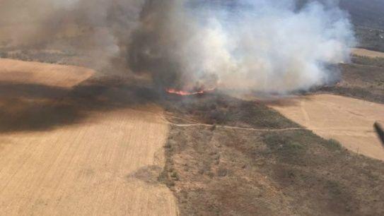 Incendio forestal afecta a Cosquín