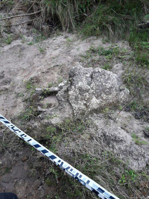 Edad cuaternaria. La mulita gigante podría llegar a tener uno 10.000 millones de años. Foto: Policía Federal