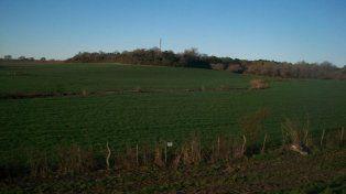 Polémica. En zonas rurales hay preocupación por los agroquímicos.