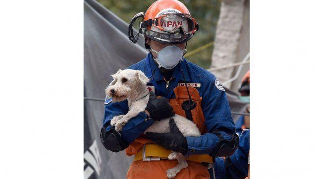 Después de días de apoyo en las tareas de rescate