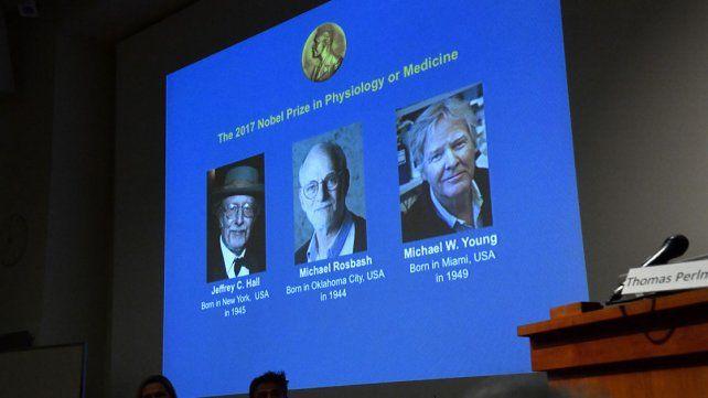 Tres estadounidenses ganan el Nobel de Medicina