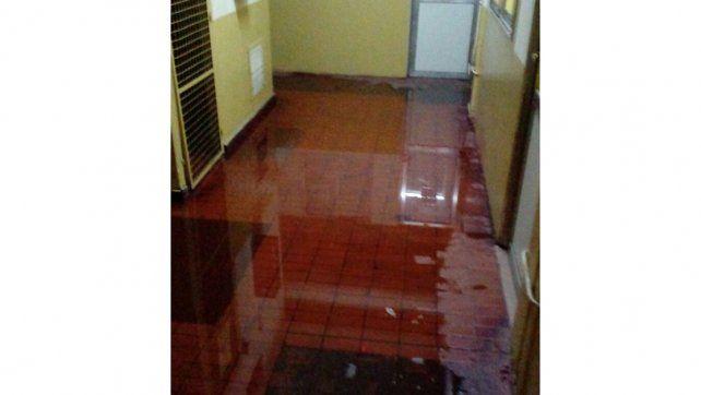 Con oficinas inundadas, apelan a la solidaridad de sus compañeros