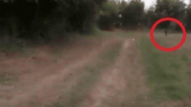 VIDEO: ¿Un duende acosó a un grupo de tucumanas?