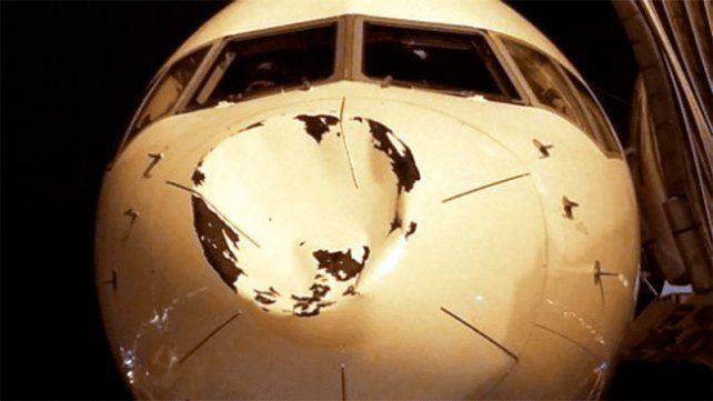 Aseguran que un avion con jugadores de la NBA chocó de frente contra un OVNI