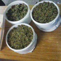Pretendía mandar dos kilos de marihuana por encomienda y fue descubierto