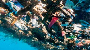 La basura llega en ocasiones a la segunda barrera coralina más grande del mundo. Foto cortesía de Caroline Power.