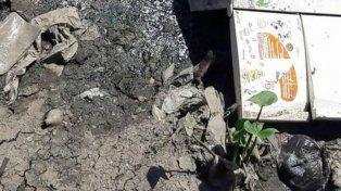 Macabro hallazgo en Lomas de Zamora: encuentran un cadáver debajo de una heladera en un arroyo