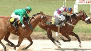 En plena carrera. Un caballo se desplomó violentamente y el jockey cayó pesadamente.
