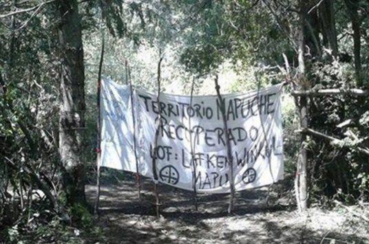 Desalojaron a los mapuches que ocupaban parte de un Parque Nacional en Bariloche