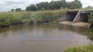 Hubo mortandad de peces en Hasenkamp y los vecinos dicen que lavaron mosquitos en el lugar