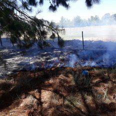 Una vela y el calor provocaron el incendio de una parte del cementerio de Médanos