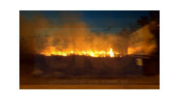 VIDEO: Importante incendio de pastizales se desató en Concordia