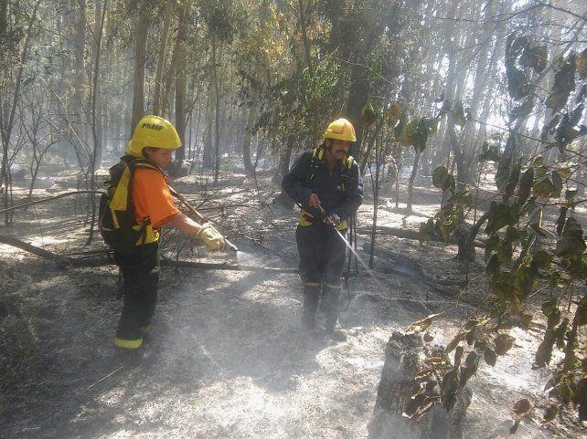 Incendios forestales tuvieron a mal traer a los Bomberos de Villa del Rosario