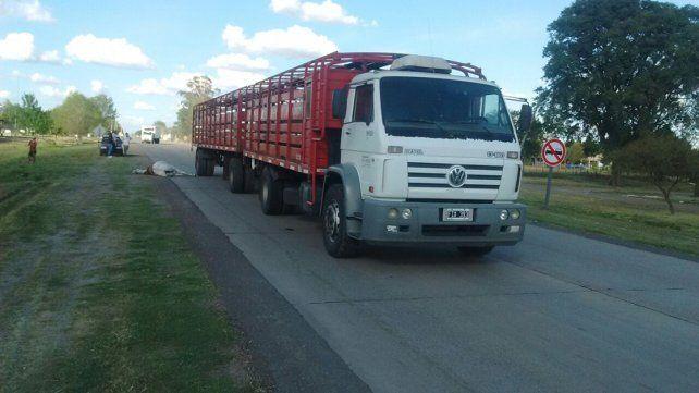 Camión mató a un caballo en la ruta y un nene de 9 años se salvó de milagro