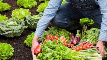 Orgánicos. Trabajo comunitario y sano como remedio al destierro y el hacinamiento.