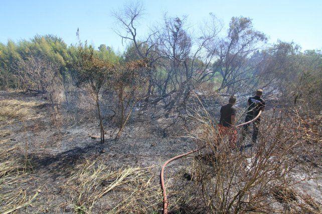 Bomberos controlaron el incendio en el barrio Médico de Paraná