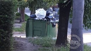 Les juntan la basura una vez por semana