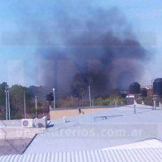 OTRA VEZ: Por tercer día consecutivo se produjo un incendio en inmediaciones de calle Miguel David
