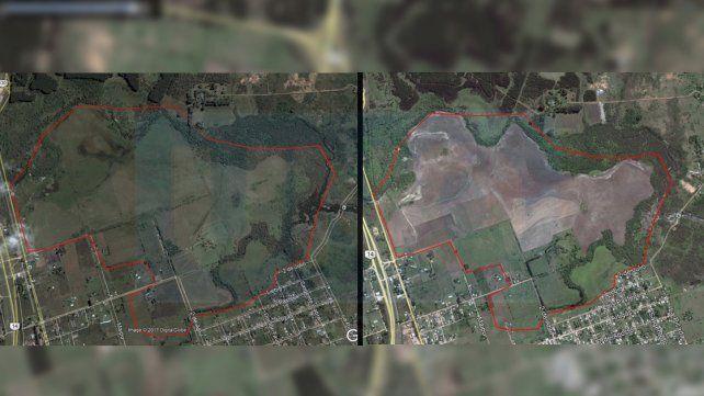 Las áreas deforestadas son alarmantes. Se estima que sólo queda 2% del monte nativo en la zona.