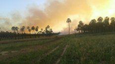 se quemaron 150 hectareas en el parque nacional el palmar