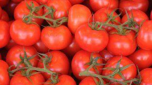 La mitad de las latas de tomate que se venden en argentina son importadas