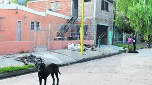 El lugar del hecho. La casa donde vive el gremialista baleado en Puerto San Martín.