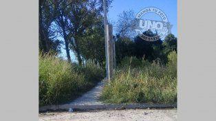 Los pastizales ya alcanzaron la altura del cartel, en calle Zanni y Spinetta