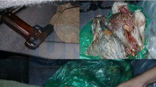 Faenados. Los cuatro ñandúes fueron cazados en la zona rural de La Paz.