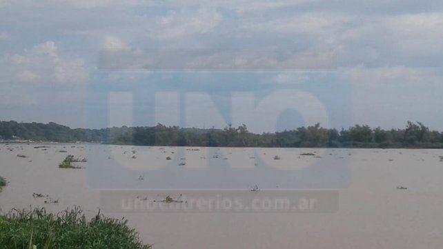 Crecida normal. Prefectura informó que no habría problemas mayores con la suba del río.