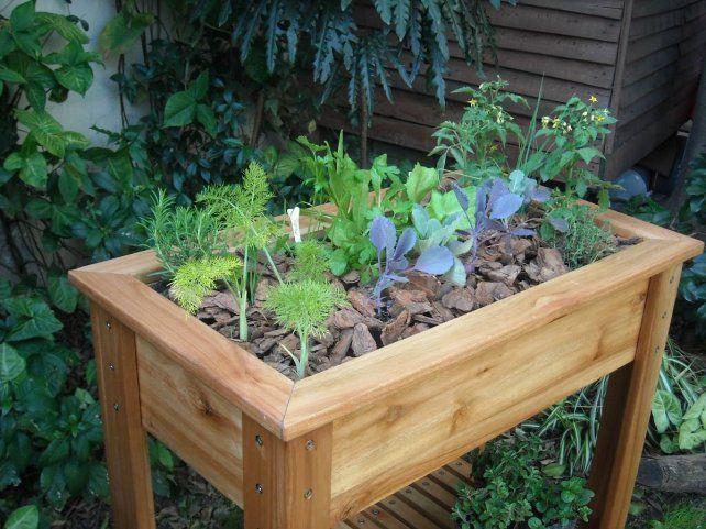 Tips para cultivar alimentos en el balcón o terraza