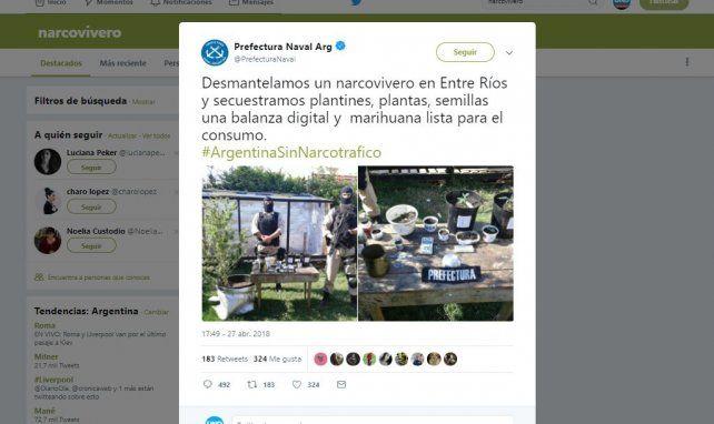 Un narcovivero en Paraná y una catarata de burlas en las redes sociales
