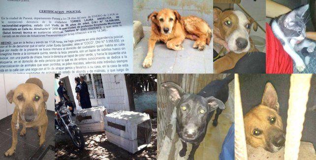 Solicitan pruebas contra un maltratador de animales