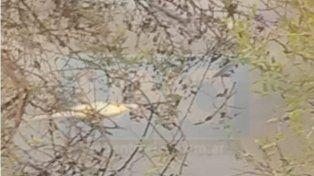 Vecinos de San José denunciaron mortandad de peces