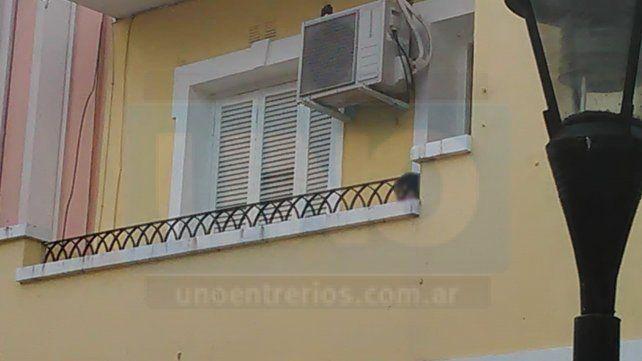 El pequeño fue contenido por un efectivo policial que accedió al balcón por una escalera