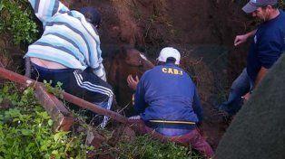 Una yegua se cayó en un pozo y debieron rescatarla con una retroexcavadora
