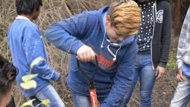 Alumnos reforestaron un monte nativo arrasado por un incendio