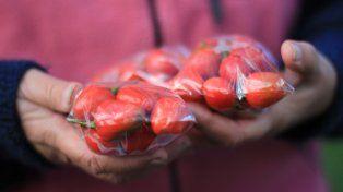 Producen alimentos para consumir y vender.