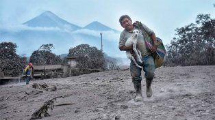 Se metió en medio de la erupción del volcán para salvar a su perrita