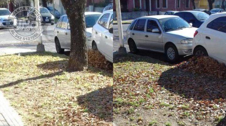 Autos sin control.En la ciudad de Paraná uno puede dejar el automóvil donde le plazca. Acá hay un claro ejemplo. Como nadie junta las hojas