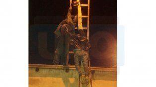 Insólito: Quiso engancharse de la red eléctrica y quedó colgado