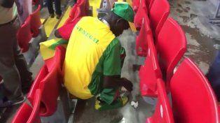 Los hinchas de Senegal limpiaron las tribunas luego de los festejos ante Polonia