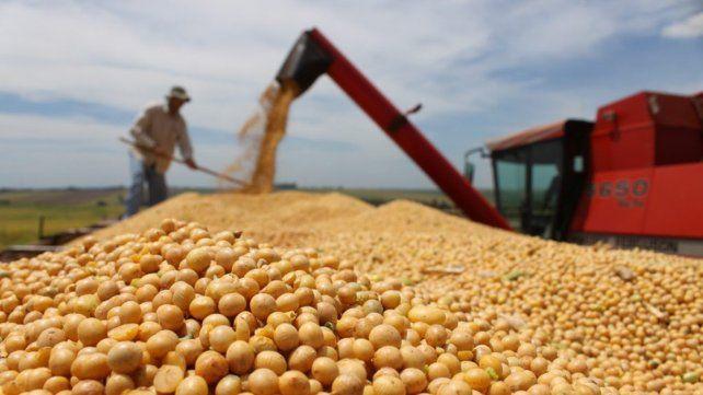 El Gobierno suspenderá la baja de retenciones para subproductos de soja