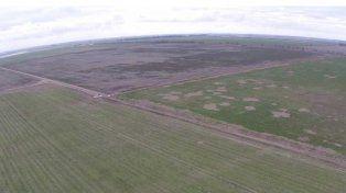 En Córdoba, el grueso de la superficie subastada corresponde a la venta de los campos de las Fuerzas Armadas