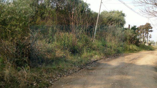 Zona de riesgo. En el barrio se formaron montes con alta vegetación.